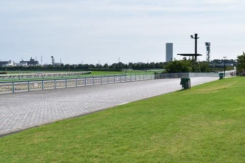 阪神競馬場4コーナー