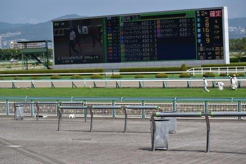 阪神競馬場ターフ
