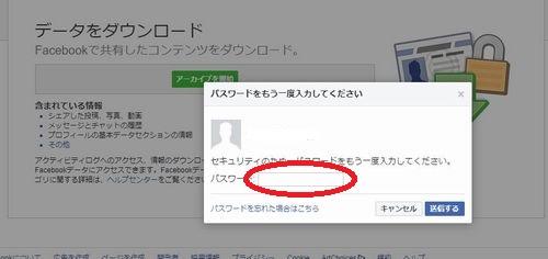 フェイスブックのパスワード確認画面