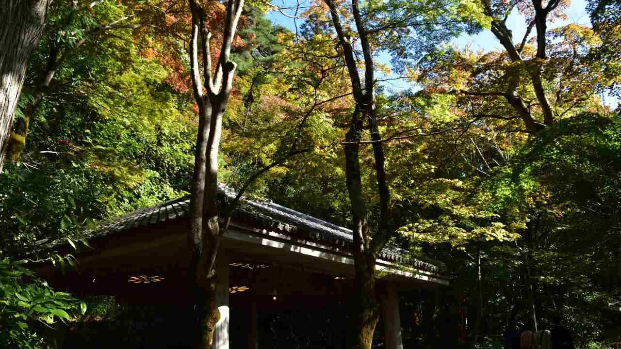 瑞宝寺公園の休憩所
